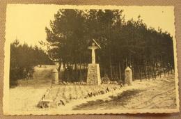 Westmalle (Malle): Ingang Drie Boompjesberg. Uitg. Claes, Bazarke  (3804) - Malle