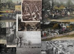 Lot 286 De 10 CPA Divers Métier Campagne Ferme Folklore Déstockage Pour Revendeurs Ou Collectionneurs - Postcards