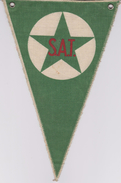 (EFl) Flag Esperanto SAT From France - Flago Pri SAT El Francio - Obj. 'Herinnering Van'