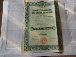 Française De CHAUX AGRICOLE (1928) - Actions & Titres