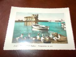 B660  Libano Fortication Du Port Non Viagg. - Cartoline