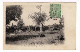 Madagascar. Tombeau Antandroy à Itsimilofo. (1517) - Madagascar