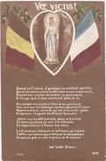 WW1 / 1914 / Voe Victis ! (Poême: Abbé Camille Blanc) / Sainte Vierge, Drapeaux - Patriotiques