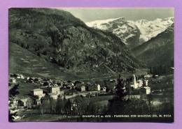 Champoluc - Panorama Con Ghiacciai Del M. Rosa - Italie