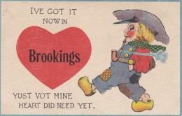South Dakota Pennant Series Ive Got It Now In Brookings - Brookings
