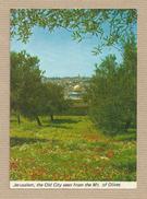 Israel Old Postcards Jerusalem Mt. Of Olives Places Of The Bible - Israel