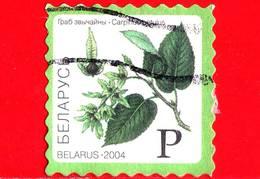 BIELORUSSIA - Usato - 2004 - Alberi E Arbusti - Carpino Bianco - Hornbeam -  P (870) - Bielorussia