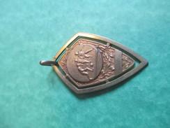 Médaille De Sport/Foot-Ball /Bronze Doré  ( Poinçon) / U.S.L. Stade De LIMEIL/1929        SPO128 - Football