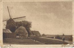 Ak Alkmaar, Bergerweg    Mühlen-Molen Moulin - Alkmaar
