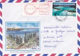 NOUVELLE CALEDONIE NOUMEA RIVIERE SALEE  VIGNETTE DISTRIBUTEUR AUTOMATIQUE + TIMBRES EN 1991 LOT DE 2 ENVELOPPES - Nouvelle-Calédonie