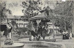 Costa Rica - Porto Limon - Parque Y Gran Hotel - Ed. Antonio Lehmann - Carte Non Circulée - Costa Rica
