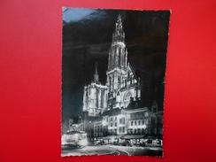 Anvers :Illumination De La Place Verte Et Cathédrale (A2796) - Antwerpen