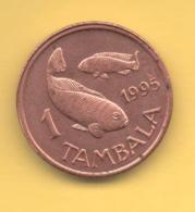 MALAWI - 1 Tambala 1995  KM33 - Malawi