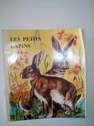Ancien LES PETITS LAPINS éditions BIAS Collection Belles Images Illustrations ALICE HUERTAS - Contes