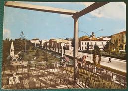 PIOVE DI SACCO (PADOVA) - VIALE EUROPA E GIARDINI - Padova