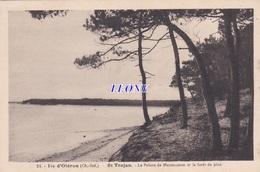 CPSM 9X14 De L' ILE D' OLERON    (17) -  SAINT TROJAN - La POINTE De MAUMUSSON Et La FORET De PINS N° 21 - Ile D'Oléron