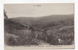 ENVIRONS DE ROANNE - N° 5133 - LA CROIX DU SUD - VALLEE DE SAINT RIRAND - CPA NON VOYAGEE - Roanne