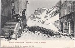L'entre Principale De L'Hospice Du Grand St Bernhard Bistum Sitten Berhardiner Rettungs Hund TOP-Erhaltung Ungelaufen - VS Wallis