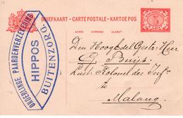 1910  Briefkaart Met Logo ONDERLINGE PAARDENVERZEKERING HIPPOS Van Buitzenzorg Naar Malang - Indes Néerlandaises