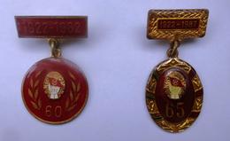 Romania, 1982, 1987, Lot Of 2 Communist Pins / Badges - Youth Communist Party (UTC) Anniversary - Associations