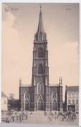 Boom  Cpa Kerk - Lier