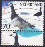 Netherlands  1997  1 V Used Barnacle Goose Bird Oiseau Birds