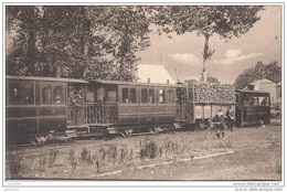 ROSSIGNOL ..--  TRAM . Arrivée Du TRAM  Venant De  MARBEHAN Vers  SAINTE - CECILE . - Tintigny
