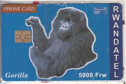 RWANDA - Gorilla, First Chip Issue 5000 Frw, Mint