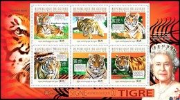 GUINEA 2010 SHEET ASTROLOGICAL SIGN OF THE TIGER SIGNE ASTROLOGIQUE CHINESE HOROSCOPE TIGRE WILD CATS WILDLIFE Gu10403a - Guinea (1958-...)