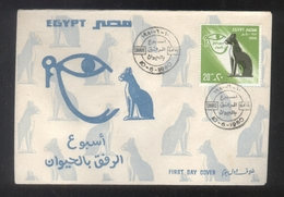 Egypt 1980 -  Prevention Of Cruelty To Animals Week  - FDC - Domestic Cats Rare - Domestic Cats