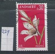 Frans-Andorra    Y /T     229     ( O)