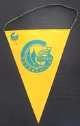 FK GUBER SREBRENICA, BOSNIA FOOTBALL CLUB, CALCIO OLD PENNANT, SPORTS FLAG + PIN - Uniformes Recordatorios & Misc
