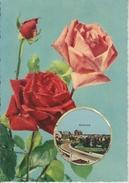 """D60 - BEAUVAIS - CARTE PARFUMEE DE LUXE """"VALLAZUR"""" GRASSE - PARFUM ROSE DE FRAGONARD - Beauvais"""