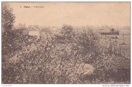 Ciplet - Panorama (Desaix) Confrérie Du Rosaire 1932 - Braives