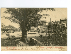 "C 19834   -   Alto Dande  -  Fazenda  ""Tentativa""   -   Habitaçöes - Angola"