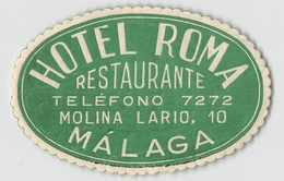 """D5778 """" HOTEL ROMA - MALAGA  """" ETICHETTA ORIGINALE - ORIGINAL LABEL - - Adesivi Di Alberghi"""