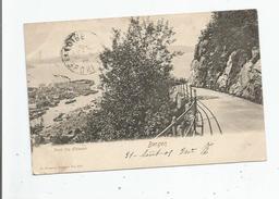 BERGEN 163 PARTI FRA FLOIVEIEN 1905 - Norvège