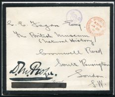 MOURNING COVER SANDRINGHAM OFFICIAL PAID GEORGE V BRITISH MUSEUM 1926 - 1902-1951 (Kings)