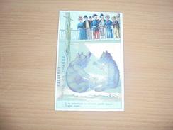 "Chromo "" Balleroy-Hotel De France-Vve Vintras "" : 2 Ours Au Zoo - Trade Cards"
