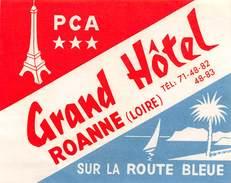 """D5789 """"GRAND HOTEL ROANNE - LOIRE - SUR LA ROUTE BLEUE"""" ETICHETTA ORIGINALE - ORIGINAL LABEL - Adesivi Di Alberghi"""