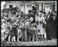 FINE ORIGINAL PRESS PHOTO QUEEN ELIZABETH II ST. DAVID'S DAY WALES & DAFFODILS - Andere Sammlungen