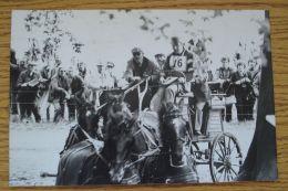 ORIGINAL PRESS PHOTO PRINCE PHILIP DUKE OF EDINBURGH WINDSOR HORSE SHOW 1977 - Andere Sammlungen