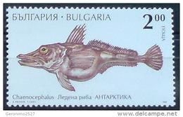 BULGARIA 1995 FAUNA Antarctic Animals FISH - Fine Stamp MNH