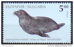 BULGARIA 1995 FAUNA Antarctic Animals SEAL - Fine Stamp MNH