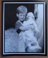 FINE ORIGINAL PRESS PHOTO PRINCE HARRY & DOG IN MAJORCA ON HOLIDAY 1987 - Other Collections