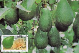 AFRIQUE DU SUD  South Africa 0838 Avocat - Vegetables