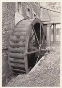 Photo Originale Moulin Molen De  Bendes à Ampsin - Lieux