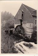 Photo Originale Moulin Molen à Herinnes Herne - Lieux