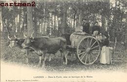 LANDES DANS L FORET MISE EN BARRIQUE DE LA RESINE ATTELAGE BOEUFS  40 - Unclassified