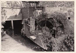Photo Originale Moulin Molen Steenvoort à Ternat - Luoghi